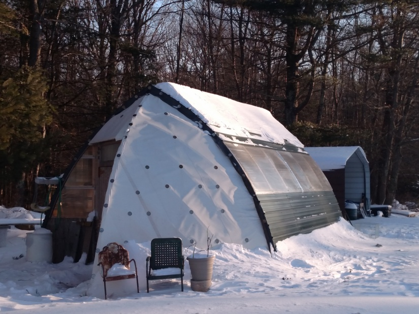 Bow shed in the snow