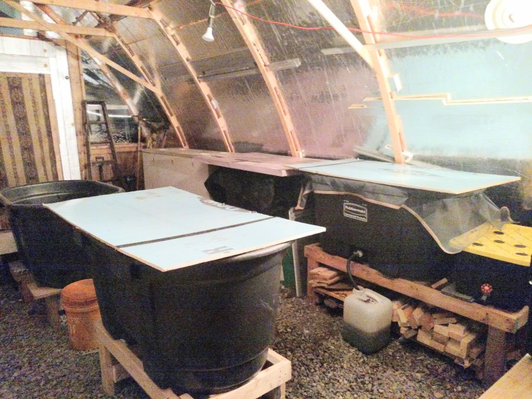 inside vermiculture shed